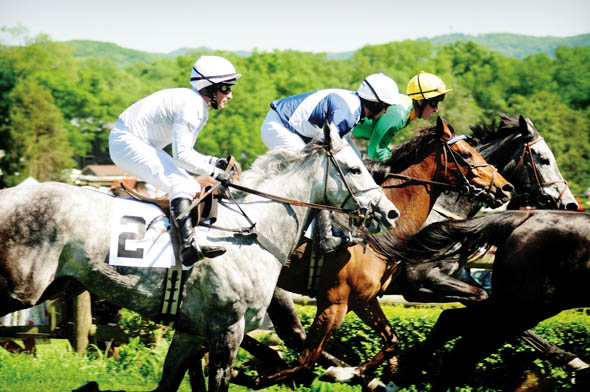 Steeplechase 2010