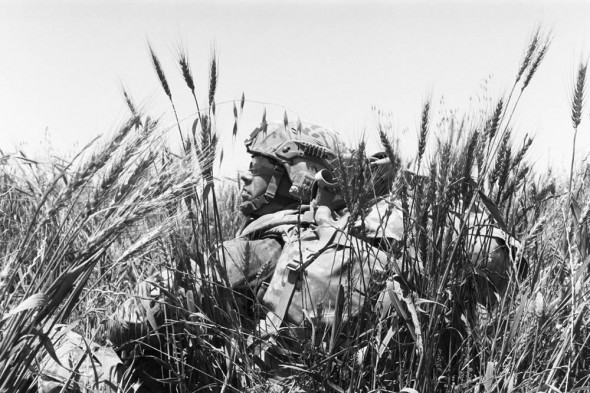 In this photo is my team leader. We had just taken fire from an enemy sniper, and we were crouching down in a wheat field concealment until we could determine the direction of fire and locate the enemy sniper. We engaged the enemy until they ran off.