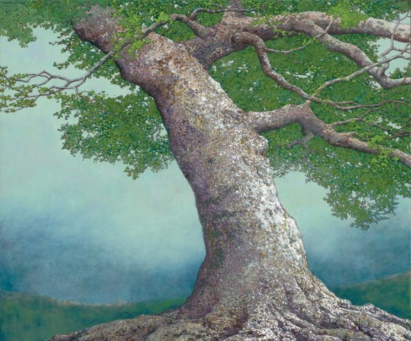"Beech Tree in Summer–Spirit of the Greenwood, 2007, Oil, 40"" x 48"""