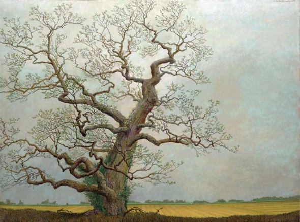 "Ancient Red Oak on Edge of an Agricultural Landscape, 2008, Oil, 30"" x 40"""
