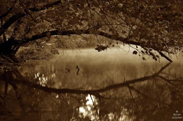The Duck River. photo: Byron Jorjorian