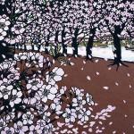 桜並木, Shu Kubo
