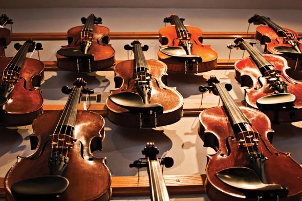 ViolinShop008
