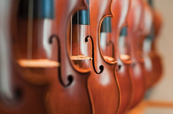 ViolinShop013