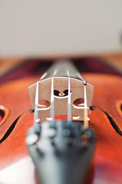 ViolinShop014