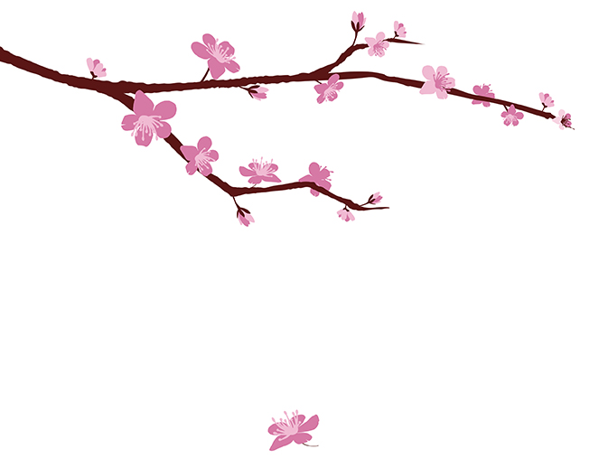 6th annual cherry blossom festival vector border art vector borders free