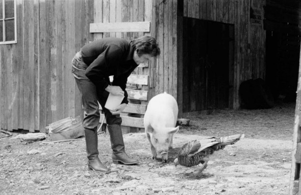 J.R. Cash, Snorkle the Pig, and Theodore the Turkey, 1982, Hendersonville, Tennessee