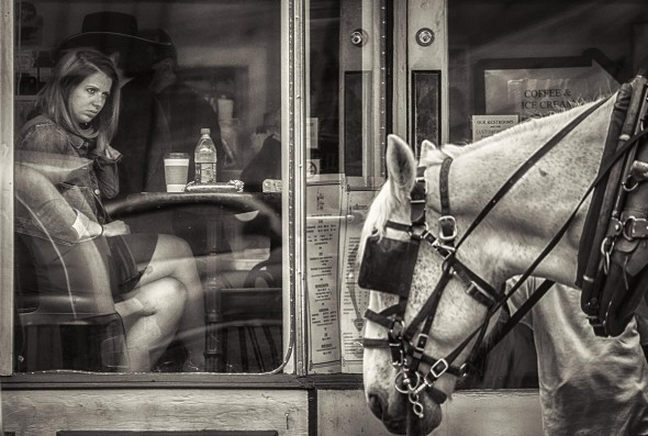 Al Wood: I was on the other side of Broadway in downtown Nashville when I saw the lady sitting in the window with her eyes fixed on something.  At first I thought it was the horse but now I am not sure it was anything in particular.