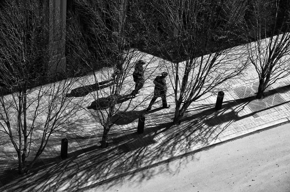 Miles A. Tudor, Shadows: While on a group outing, looking down from a parking garage, the shadows from the trees caught my eye. I set up and composed in the camera and was giving some thought as to whether it would make a good photo when a lady walked by and I thought her shadow added interest. I waited a while and three people strolled into view. After I reviewed the result in the camera, I was so pleased that I settled for taking this one shot.