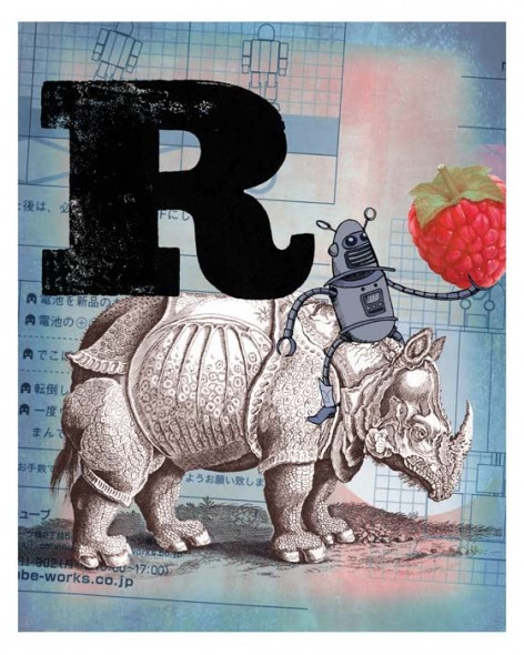 R is for Rhinoceros