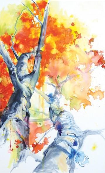 7. ( Maple Tree)