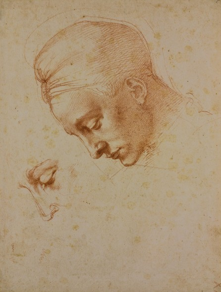 Michelangelo_7F_Study-for-the-Head-of-Leda