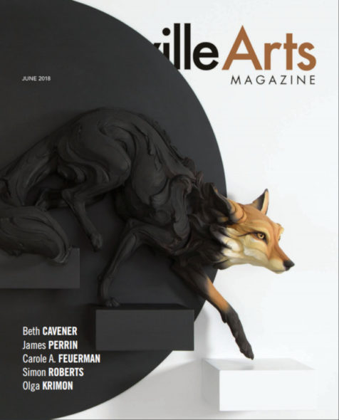 A fox in two colors, cover image